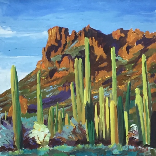Sedona Cactus, private collection, USA