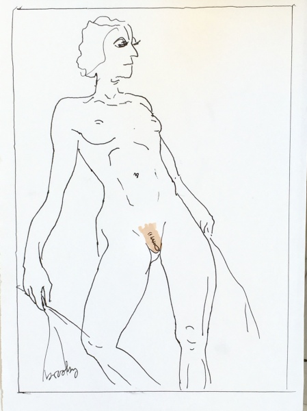 pen and ink line drawing of a nude model