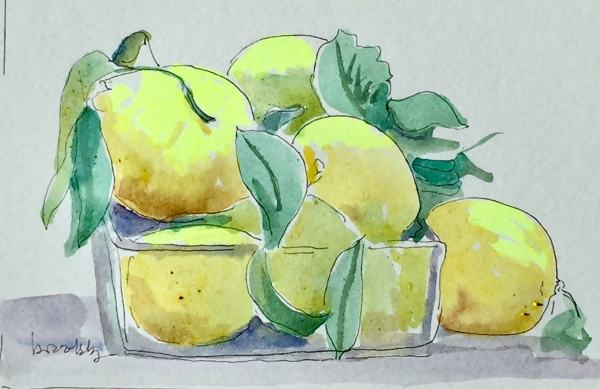 4020 Citrons du Marché Mouffetard, a postcard sized illustration, mixed media on bristol